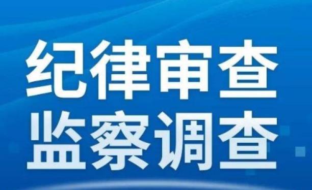 宿城区蔡集中心小学原报账员秦超接受监察调查