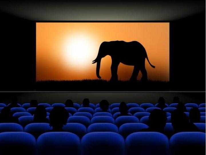 北京电影局发放2000万元专项补贴