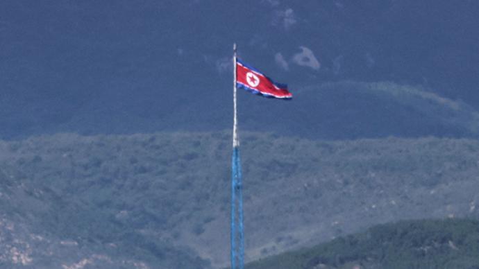 朝鲜外务省:目前提出通过朝鲜半岛终战宣言为时尚早