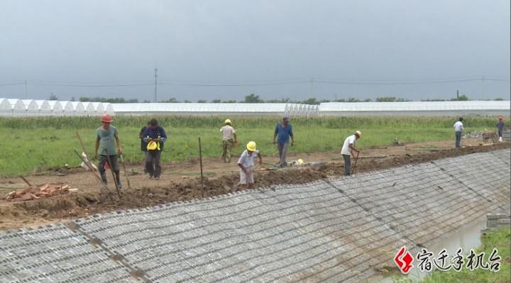 """迎战""""烟花""""(2)挖排水渠、加固大棚 农户们积极做好准备"""
