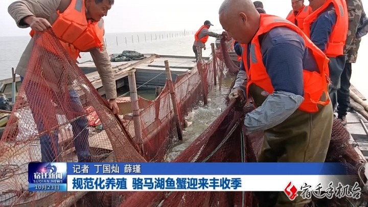 规范化养殖 骆马湖鱼蟹迎来丰收季
